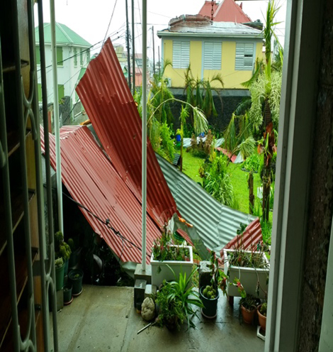 View of the Brothers' yard from dining room morning after Maria